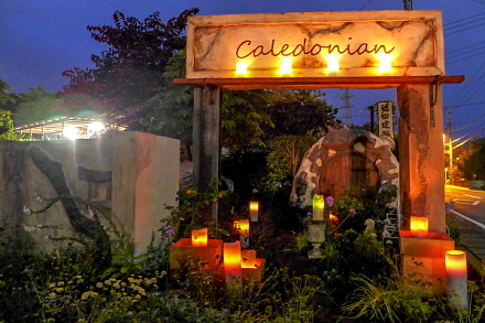 キャンドルが灯された庭園