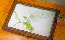 リマージュボタニック(花の肖像画)の展示
