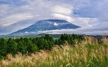 穂が出始めたススキ越しに見る富士山