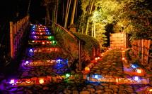 園内に設置された竹灯籠