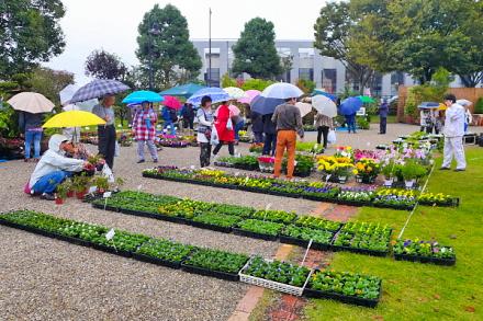 雨模様ながら賑わう緑と花の百科展