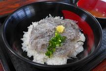 漁協食堂の美味しい生しらす丼