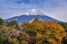 展望場からの富士山