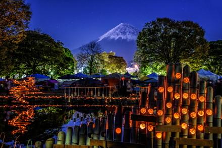 夕暮れ時の富士山と浮かび上がる竹明かり