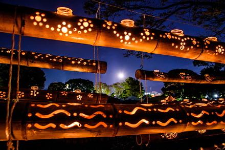 竹灯籠の合間から月を望む