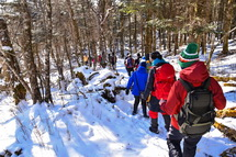 粉雪に覆われた雑木林の中を下山
