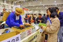 富士のお茶の販売