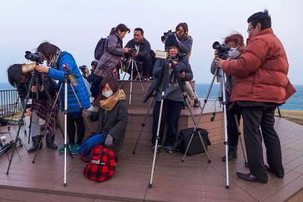 ふじのくに田子の浦みなと公園の展望台で撮影