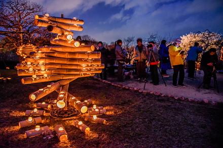 「夜梅×竹かぐや」開催の岩本山公園
