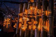 さまざまな竹灯籠が梅園を彩る