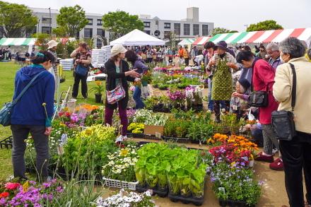 賑わう緑と花の百科展