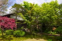 富士市オープンガーデン 大淵 M氏宅の庭