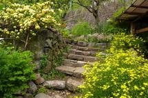 富士市オープンガーデン 岩淵 S氏宅の庭