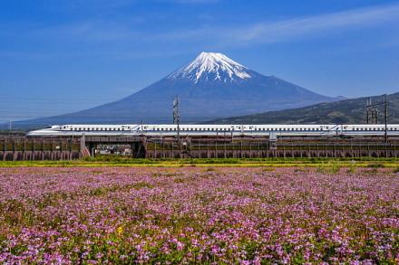 天気が良い時は富士山とコラボした風景を楽しめる