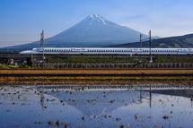富士市東部の田んぼ逆さ富士 新幹線コラボ