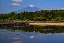 富士宮市柚野の田んぼ逆さ富士