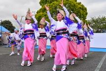 前日祭パフォーマンス 阿波踊り
