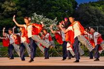 前日祭 夜のよさこい演舞風景