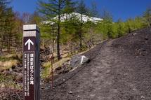 須走まぼろしの滝につながる遊歩道