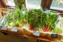 地元産有機野菜
