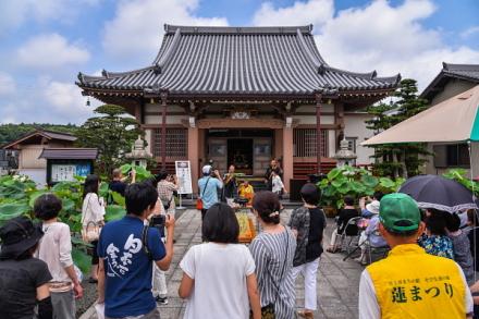 蓮の華を楽しむ会開催の代通寺