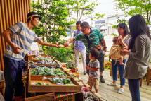 有機・無農薬野菜の販売