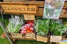 オーガニック野菜の販売