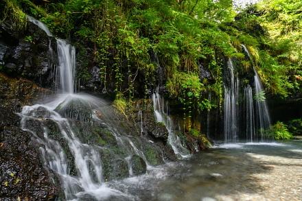 清らかな水が流れ落ちる陣馬の滝