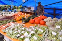 地元農産物が並ぶ