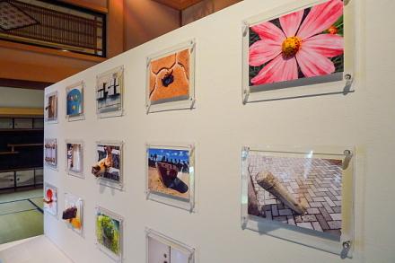 紙のアートフェスティバル展示作品「FUGITIVES&INTRUDERS」