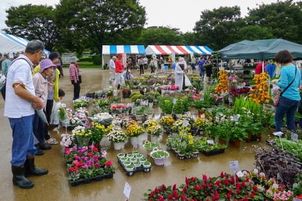 「緑と花の百科展」会場の富士市中央公園