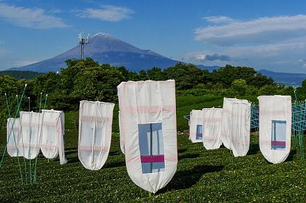 富士川SA近くの茶畑にある作品