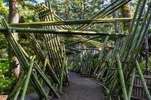 竹のインスタレーションアート