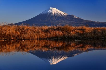 富士川河口付近の池からの逆さ富士