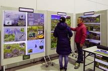 富士山の自然環境についての展示