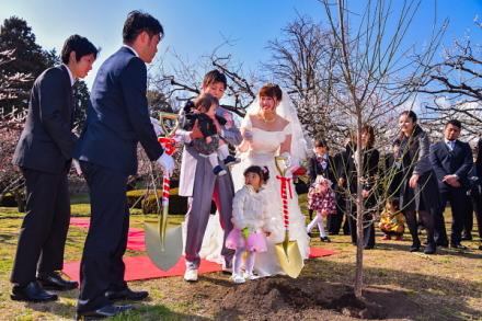 梅苗の記念植樹
