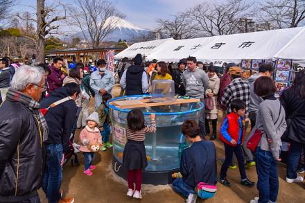 にじます祭開催の神田川ふれあい広場