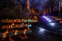 幻想的な梅園の竹灯籠