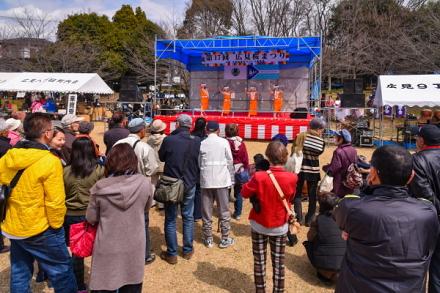 桜まつり開催の広見公園