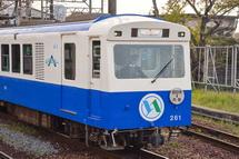 小さく可愛らしい電車