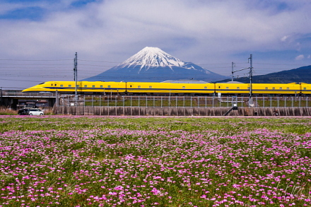 れんげ畑からのドクターイエローと富士山の風景