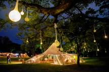木に付けられた明かりが素敵な雰囲気を演出