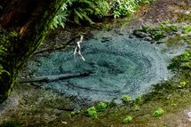 綺麗な柿田川の湧水