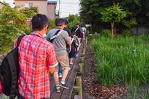 鮫島のビオトープ内を歩く