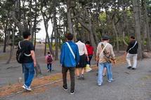 松林内の遊歩道を歩く