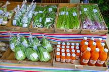 無農薬野菜の販売