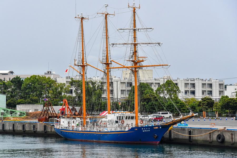 田子の浦港に初寄港した帆船「みらいへ」