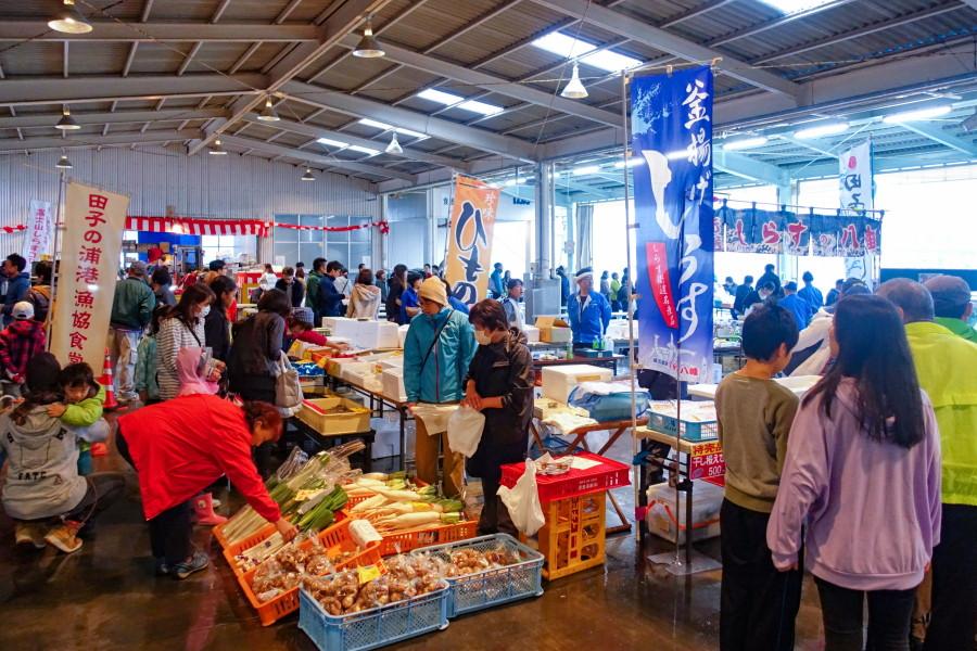 田子の浦漁港水産まつり開催で賑わう漁協