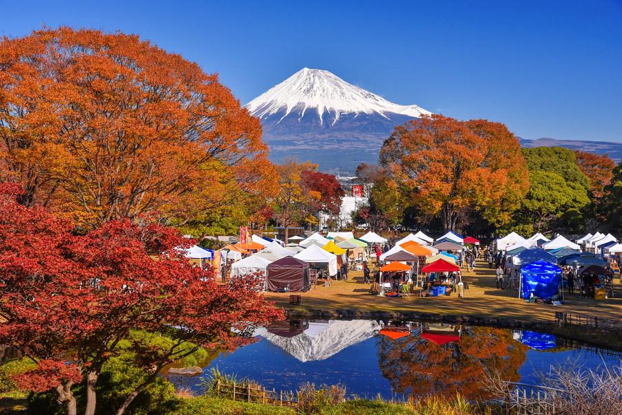 美しい富士山と紅葉を楽しめた会場の富士市中央公園