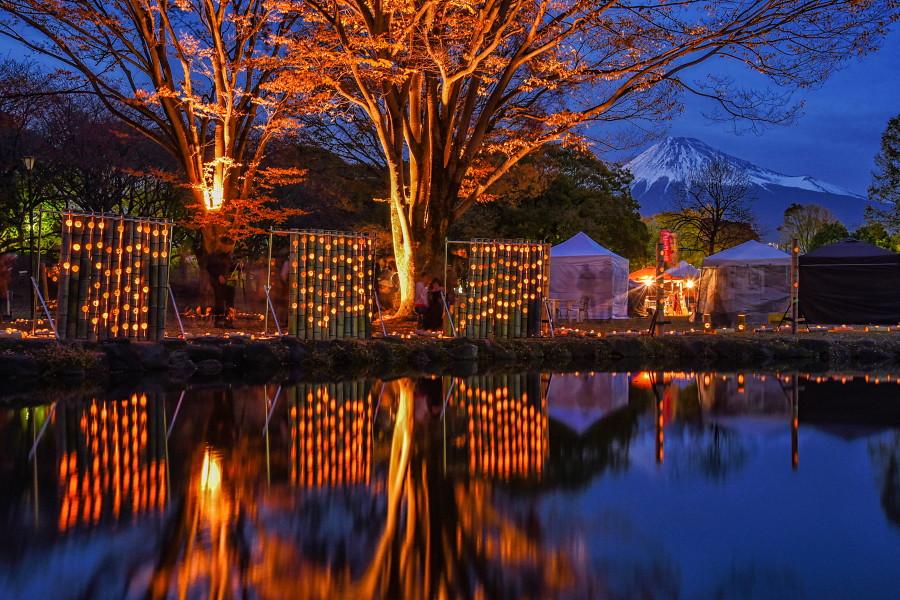 日暮れとともに竹灯籠の灯りが浮かび上がる